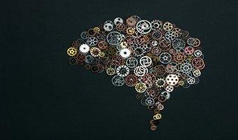 body and brain prodigy podcast